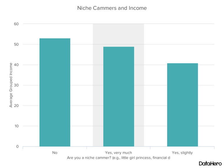 DataHero Niche Cammers and Income.png
